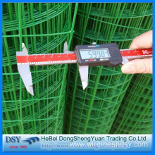 High Quality for Stainless Steel Welded Wire Mesh PVC Welded Wire Mesh export to French Polynesia Suppliers