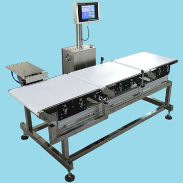 Inline check weighing systems (MS-CW2018)