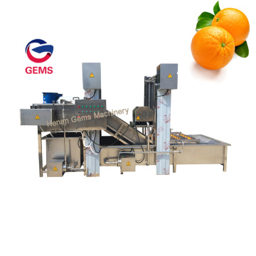 Orange Washing Waxing Drying And Grading Machine