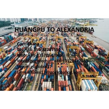 China for Africa Shipping Line Guangzhou Huangpu Sea Freight to Egypt Alexandria export to France Manufacturer