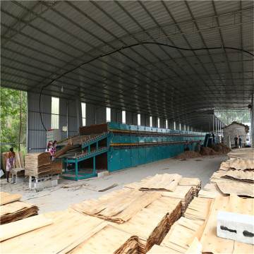 Wood Veneer Drying Equipments