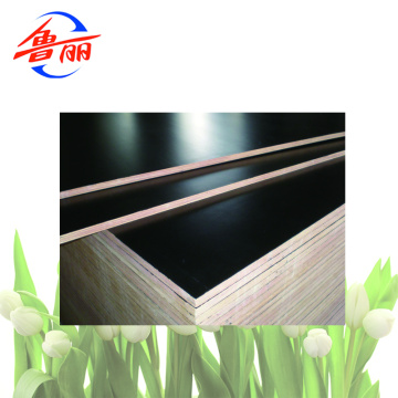 Construction plywood film faced plywood