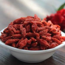 BIO GOJI BERRIES--2017 new crop