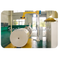 Paper reel conveyor