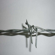 Cheap price for Pvc Galvanized Barbed Wire Hot-Dipped Galvanized Barbed Wire Price Per Roll supply to Nauru Importers