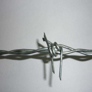 Hot-Dipped Galvanized Barbed Wire Price Per Roll