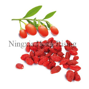 Chinese healthy beverage alcoholic liquor goji wine
