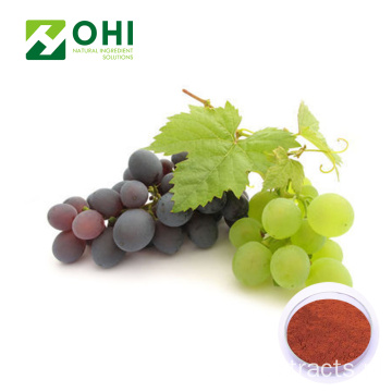 Grape Skin Extract Resveratrol 98%