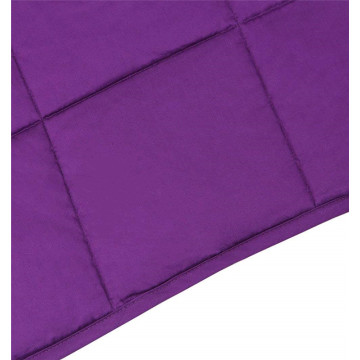Luxury High Quality 60*80 Weighted Blanket
