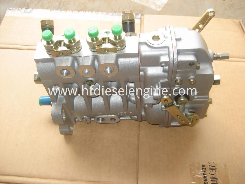 deutz fuel injection pump (6)