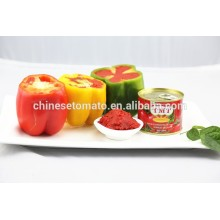 Chinese Professional for 70g Gino Tomato Paste Aseptic tin tomato paste VEGO Brand export to Italy Factories