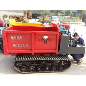 Chongqing Mountain Crawler Truck