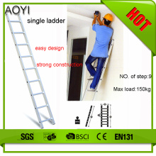 5m single straight ladder