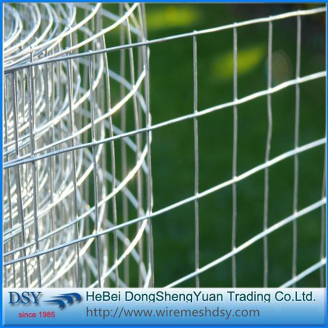 1/4 Inch 2x2 Galvanized Welded Wire Mesh