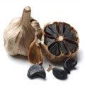 Fermentation black garlic seeds