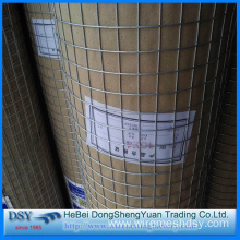 SS Welded Wire Mesh for Chicken Cage