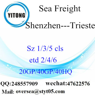 Shenzhen Port Sea Freight Shipping To Trieste