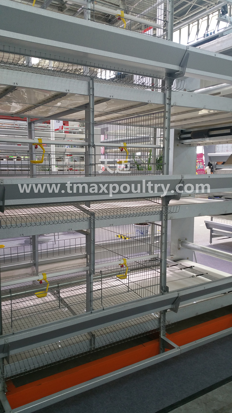 Broiler cages