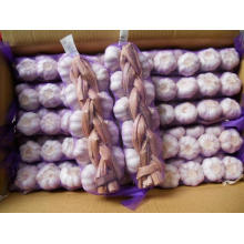 Jinxiang Good Quality Garlic Braids Different Packages