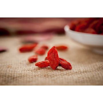 Conventional Dried Goji Berries 500#