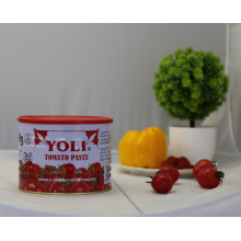 Manufacturer of for Tomato Sauce 2200g tomato paste in canned food price export to Bosnia and Herzegovina Importers