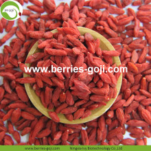 New Arrival Hot Sale Dried Himalayan Goji