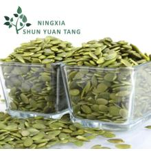 Wholesale Specification Snow White Pumpkin Seed Kernel