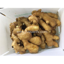 250g fresh ginger to middle east countries