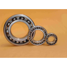 Single Row Deep Groove Ball Bearing (61848)