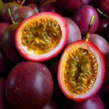 Passion Fruit Plant Fruit