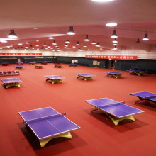 PVC Sports Flooring Indoor Table Tennis Court