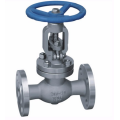DN65 Straight Type Stainless Steel Globe Valve