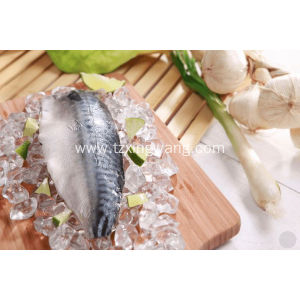 Frozen Mackerel Fillet Piece