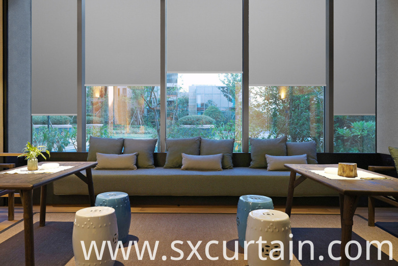 Roller Curtain Shade Plain Dyed