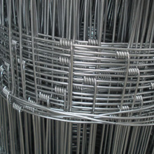 Hinge Joint Farm Field Wire Mesh Fence
