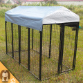 Chain Link or galvanized comfortable 10x10x6 foot classic galvanized outdoor dog kennel