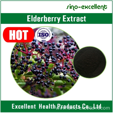 Natural Elderberry Anthocyanin 5%-25% Elderberry Extract