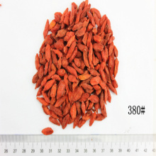 Certified Size 380 Organic Dried Goji
