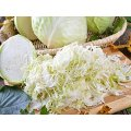 Cabbage Slicer Chopper Shredder Cutter Slaw Grater