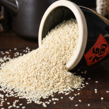 Supply India white hulled sesame seed