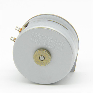 Maintex 25BY26 25mm 24V Permanent Magnet Stepper Motor