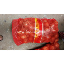 Fresh Gansu yellow onion
