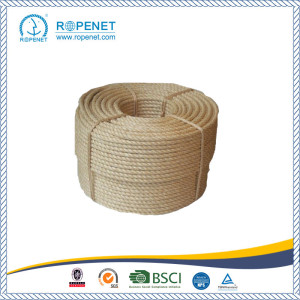 Bottom price for Sisal  Rope Sisal Packing Rope Used for Agriculture export to Solomon Islands Factory