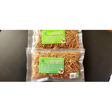 pets feed of dried yellow mealworms