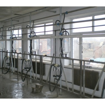 Pipeline Cow Milking Milking Equipments