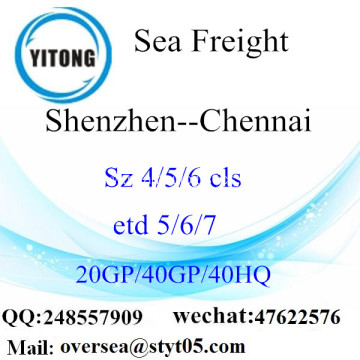 Shenzhen Port Sea Freight Shipping To Chennai
