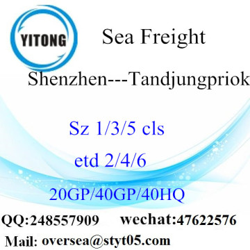 Shenzhen Port Sea Freight Shipping To  Tandjungpriok