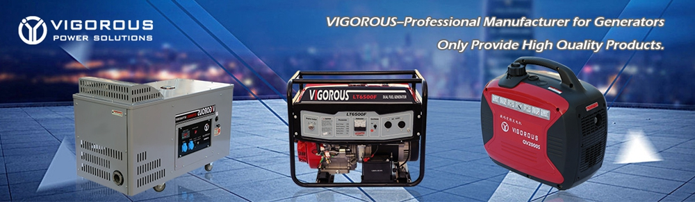 VIGOROUS--Manufacturer Specializing in Generators