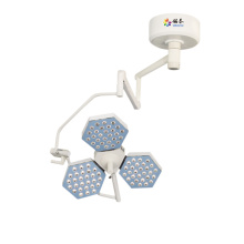 factory low price Used for Operation Theatre Light Hospital shadowless OT light supply to Rwanda Importers