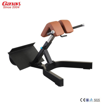 Reliable for China GYM Equipment, America Design Gym Machine, Commercial Gym, Gym Machine Supplier Luxury Back Extension for Gym Fitness Workout export to United States Factories
